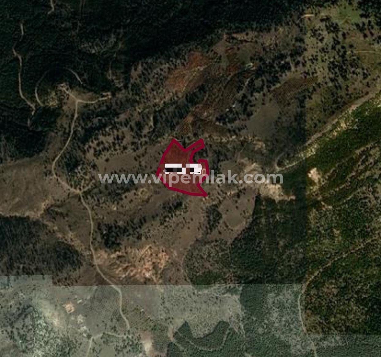 toroslar atlılar mevki 30 dönüm müstakil tapulu 42 dönüm satılık kiraz bahçesi