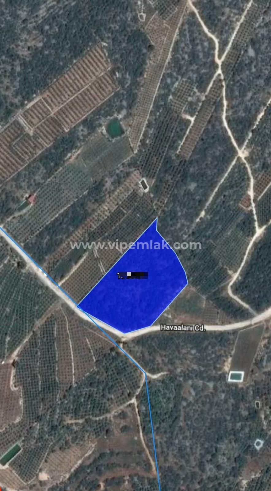 Kumkuyu'da 13916 m2 Satılık Kelepir Tarla