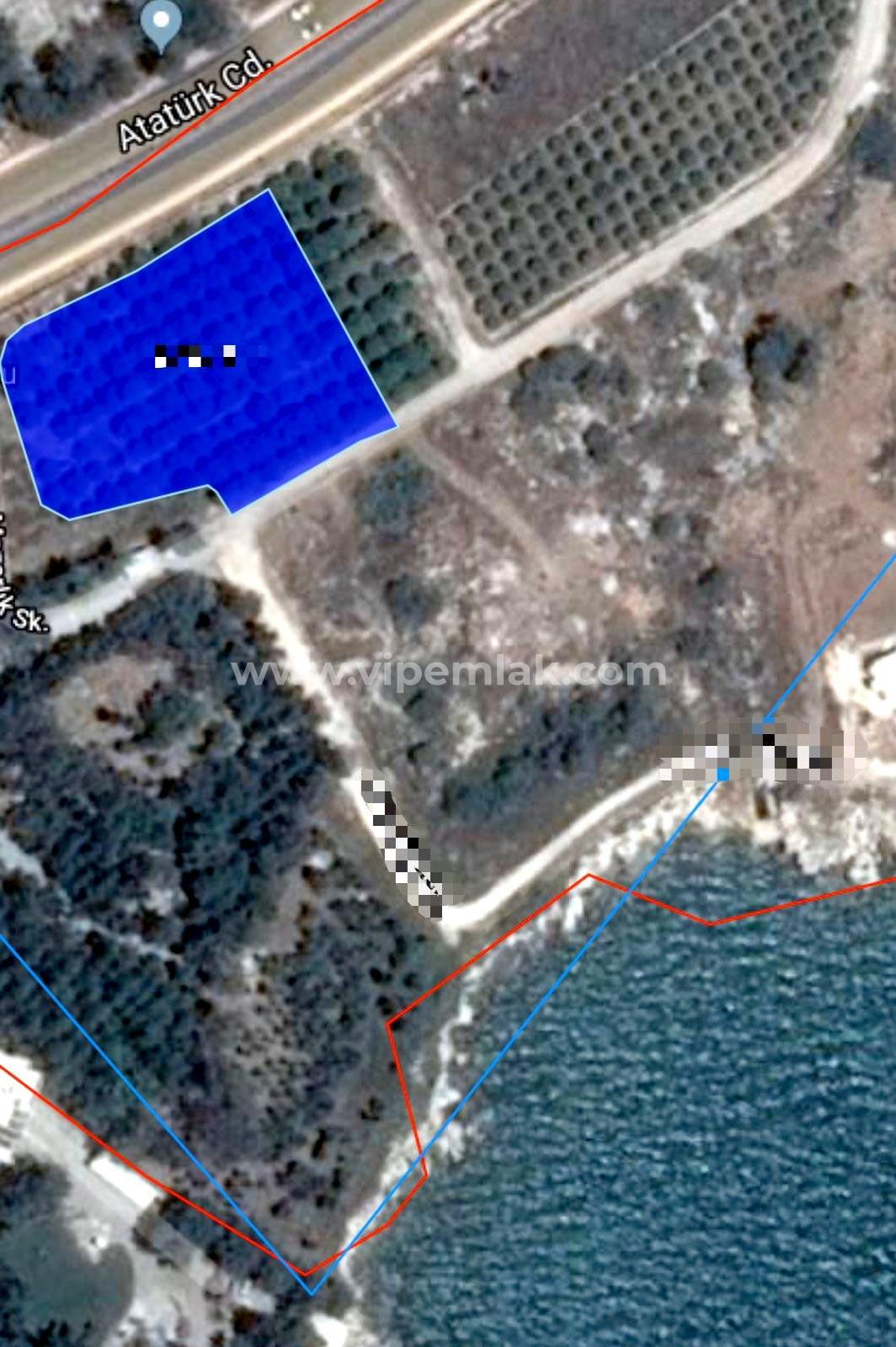 Erdemli Tırtar'da TTA nitelikli 3923 m2 Satılık Arsa